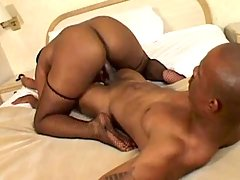 Best ebony porn clips with perfect chicks