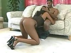Busty chocolate honey gets drilled